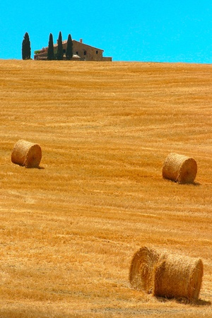 Hill with hay bales and house at the horizon in Tuscany photo