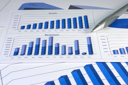 Financial management charts in a corporate blue color