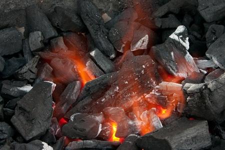 Tastetful 庭の外のバーベキューの肉を調理します。 写真素材 - 11769102