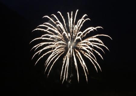 Firework explosion in a dark night photo
