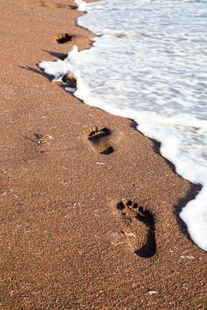 foot steps: Trail of foot steps on the beach