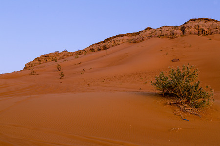 The Red sand of the Pink Rock Desert, Sharjah, Dubai, UAE 写真素材
