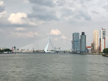 The Rotterdam Skyline with the Erasmusbrug bridge, Netherlands. 写真素材