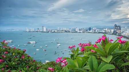 the gulf: Gulf of pattaya