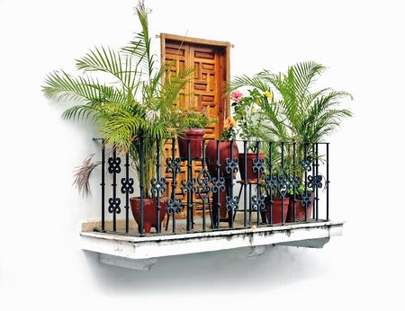 balcony with palm trees