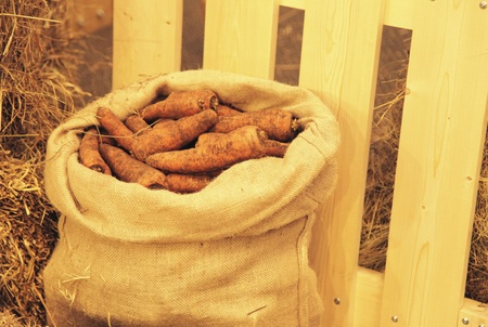out of doors: red carrots in a bag out doors