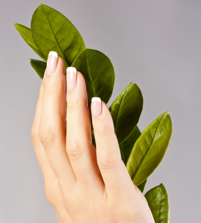 Beautiful hand girl with green leaves  studio photo