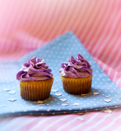 cute cupcakes with purple cream Standard-Bild