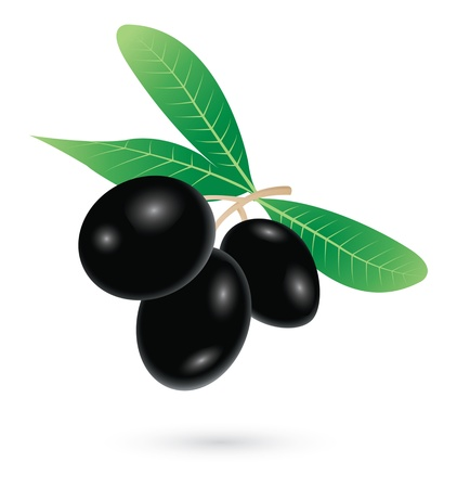 Black olives on white background