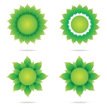 vector illustration of eco sunflower set on white background Illustration