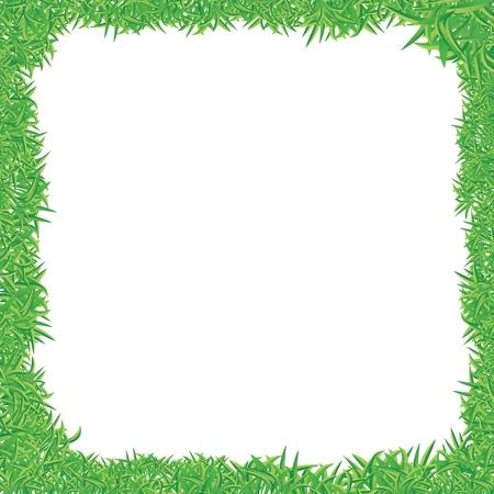 vector illustration of green grass frame Illustration