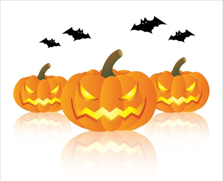 Pumpkin and bat halloween on white background Vector