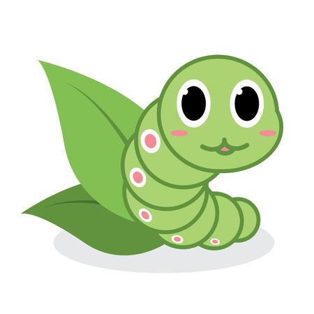 gusano caricatura: Cute dibujos animados gusano verde con la hoja de té verde sobre fondo blanco. Ilustración vectorial
