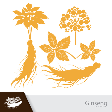 Ginseng root with leaf and flower symbol isolated on white background. Ilustracja