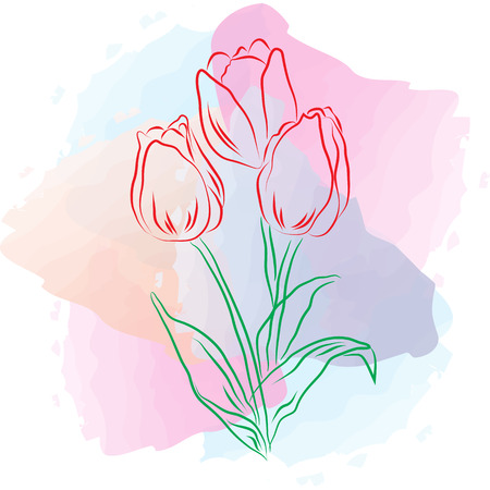8 March watercolor card.Tulips on watercolor spots 1.1 Stock Photo