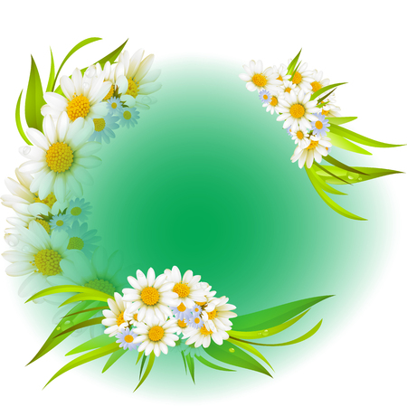 White daisies background.daisies background decoration flower happy Stock Vector - 82650689