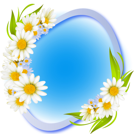 Beautiful white daisies on blue background spring border frame