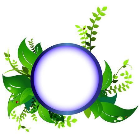 frame eco nature, ladybug Illustration