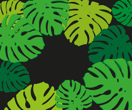 Close up of lush tropical palm leaves or fronds as natural background