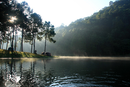 evaporating: Camping by the lake with sun shining and fog floating