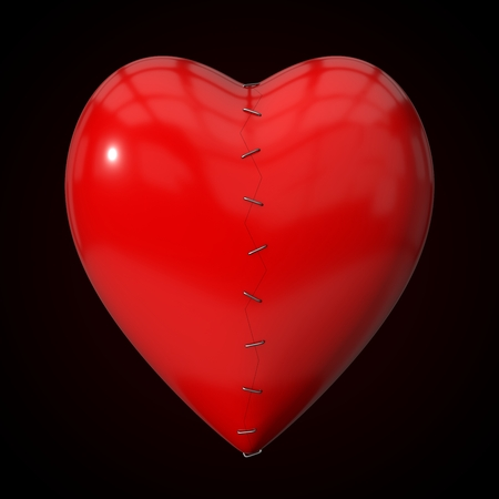 repaired: repaired heart