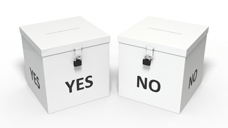 balloting: 3d illustration of dual vote box. isolated on white.