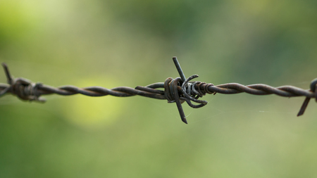 rusted old barbed wire