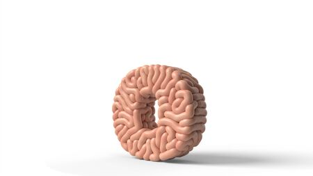 human brain in shape of letter o. suitable for brain, biology, medicine, science and font themes. 3D illustration