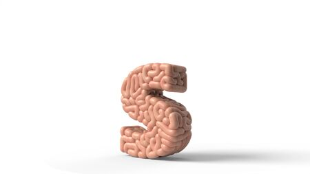 human brain in shape of letter s. suitable for brain, biology, medicine, science and font themes. 3D illustration