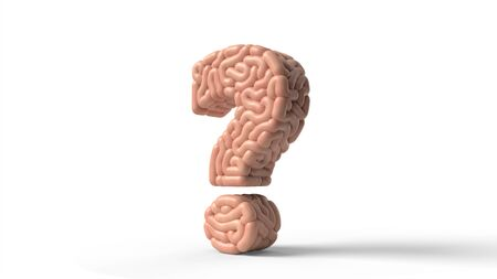 human brain in shape of question sign. suitable for brain, biology, medicine, science and font themes. 3D illustration Banco de Imagens