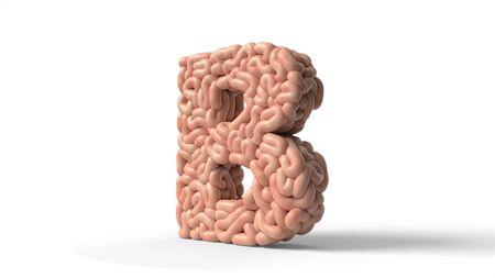 human brain in shape of letter B. suitable for brain, biology, medicine, science and font themes. 3D illustration