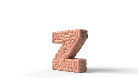 human brain in shape of letter z. suitable for brain, biology, medicine, science and font themes. 3D illustration