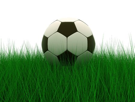 kickball: soccer ball in grass background 3d image Stock Photo