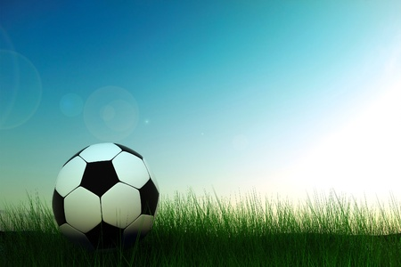 recreational pursuit: soccer ball in grass background 3d image Stock Photo