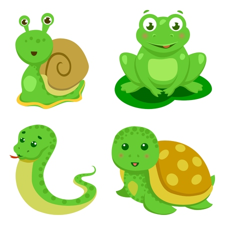 amphibians: Reptiles and amphibians decorative set of turtle snake in cartoon style isolated vector illustration