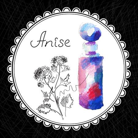 aromatique: Sant� et Nature Collection. Huile aromatique d'anis (aquarelle et illustration graphique)