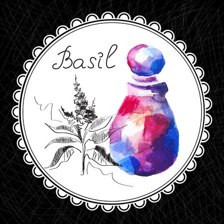 aromatique: Sant� et Nature Collection. Huile aromatique de basilic (aquarelle et illustration graphique)