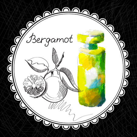 aromatic: Health and Nature Collection. Aromatic bergamot oil (watercolor and graphic illustration) Illustration