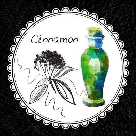 aromatic: Health and Nature Collection. Aromatic cinnamon oil (watercolor and graphic illustration)