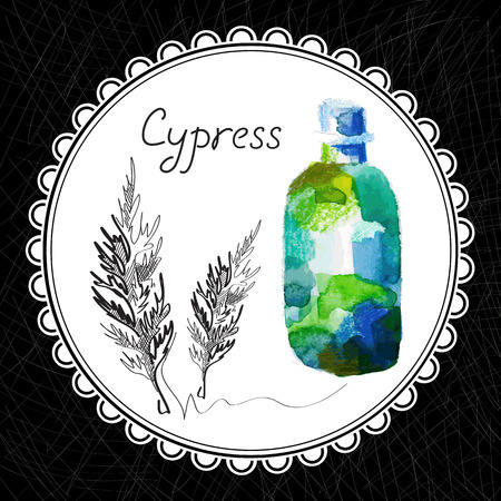 aromatic: Health and Nature Collection. Aromatic cypress oil (watercolor and graphic illustration)