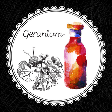 aromatic: Health and Nature Collection. Aromatic geranium oil (watercolor and graphic illustration) Illustration