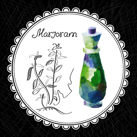 Health and Nature Collection. Aromatic marjoram oil (watercolor and graphic illustration)