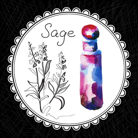 sage: Health and Nature Collection. Aromatic sage oil (watercolor and graphic illustration)
