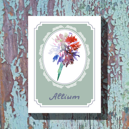allium: Card template with floral element with allium on wooden background. For floral shop, wedding design, print and web