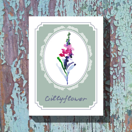 gillyflower: Card template with floral element with gillyflower on wooden background. For floral shop, wedding design, print and web
