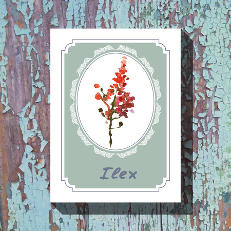 ilex: Card template with floral element with ilex on wooden background. For floral shop, wedding design, print and web