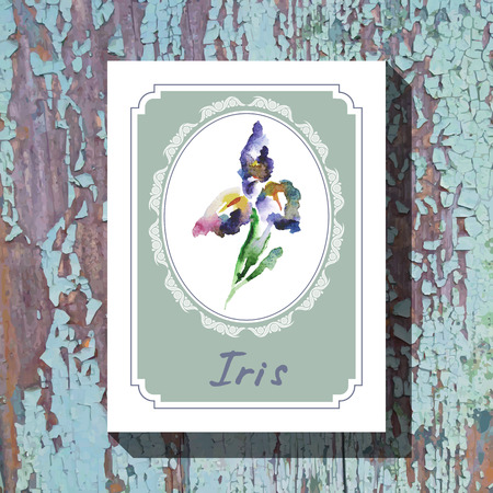 Card template with floral element with iris on wooden background. For floral shop, wedding design, print and web Vector