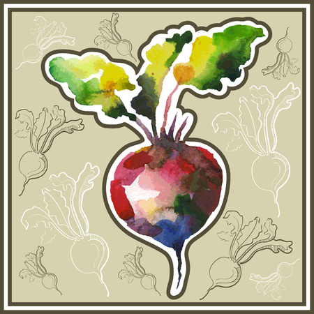 ard: Ð¡ard (postcard) with beetroot  in watercolor style. Illustration