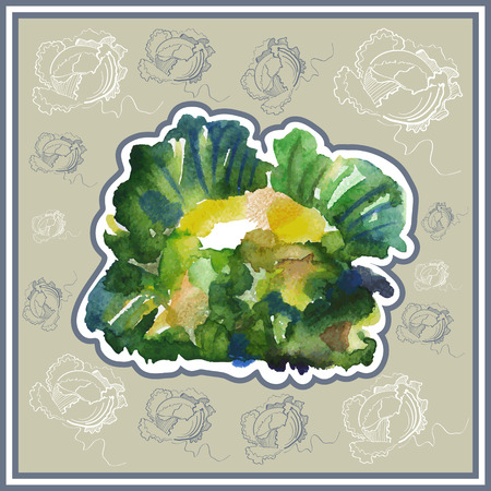 ard: Ð¡ard (postcard) with cabbage  in watercolor style.