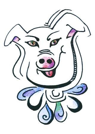 porcine: Hand-drawn portrait of pig. Vector illustration.